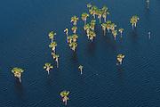 Capoey Lake<br /> North west<br /> GUYANA<br /> South America