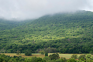Cornwall, N.Y.  - Schunnemunk Mountain view on the morning of July 19, 2019.