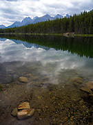 The placid surface of Herbert Lake reflect the world around it. Banff National Park, Alberta, Canada