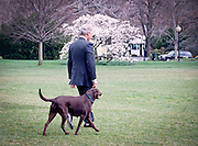 US President Bill Clinton walks to Marine One with his dog Buddy after making a statement on the Yugoslavia crisis March 28, 1999 at the White House, Washington, DC.