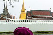 05 MAY 2013 - BANGKOK, THAILAND:  Tourists with umbellas walk past the main walls of the Grand Palace during an unseasonal thunderstorm near the Grand Palace in Bangkok, Thailand. The rainy season in Bangkok is usually mid June through early November, but 2013 has seen unseasonal rains through what is normally Bangkok's dry season.       PHOTO BY JACK KURTZ