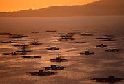 SPAIN, NORTH COAST, GALICIA mollusk fishing platforms in the Ria de Arosa at San Vicente de Grove, west of Pontevedra
