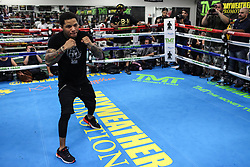 August 10, 2017 - Las Vegas, Nevada, USA - GERVONTA DAVIS performs a workout during a media day at the Mayweather Boxing Club in Las Vegas, Nevada. Davis will fight Francisco Fonseca in the IBF Junior Lightweight Championship at the T-Mobile Arena in Nevada on August 26. (Credit Image: © Joel Angel Juarez via ZUMA Wire)