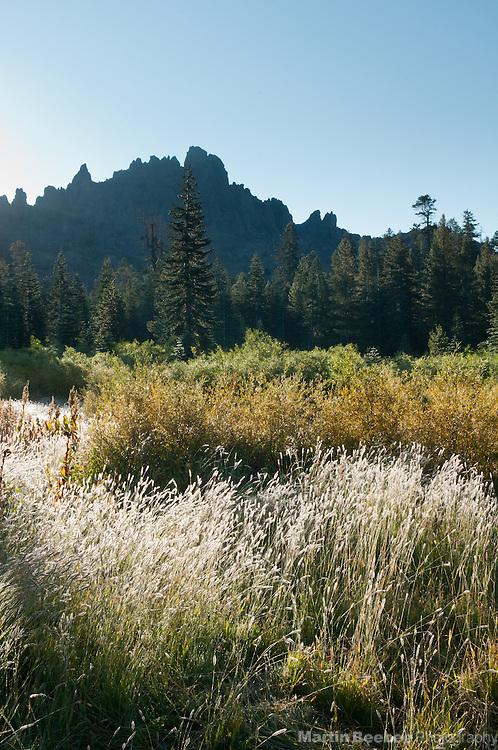 Mountains, Sierra Nevada, Toiyabe National Forest, California