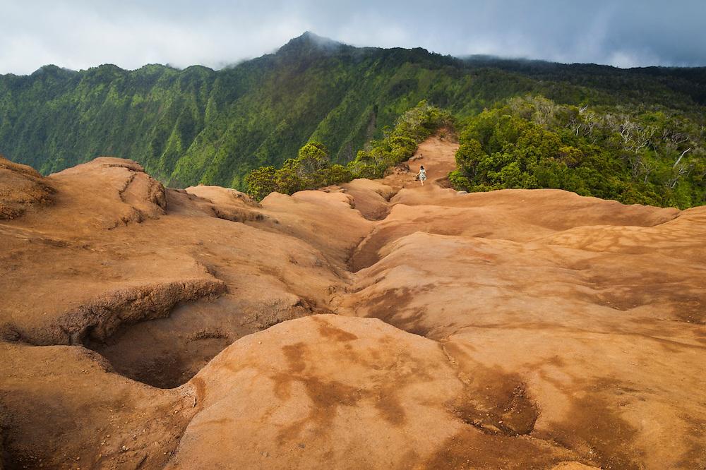 A woman hikes the Pihea Trail on the north rim of the Alakai Plateau in Kokee State Park, Kauai, Hawaii.