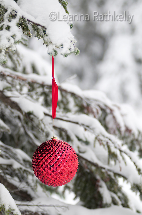 Red christmas decorations hang on a snowy tree in winter