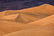 The Mesquite Flat Sand Dunes are turned golden in the early morning light in Death Valley National Park, California. The tallest dunes are about 100 feet (30 meters) tall. The Grapevine Montains are visible in the background.