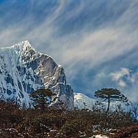 6,500-meter Teng Kangpoche rises above in trees the Khumbu region of Nepal's Himalaya.