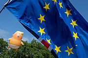 The inflatable balloon called Baby Trump flies above the European Union flag in Parliament Square in Westminster, the seat of the UK Parliament, during the US Presidents visit to the UK, on 13th July 2018, in London, England. Baby Trump is a 20ft high orange blimp depicting the US President as an enraged, smartphone-clutching infant - and given special permission to appear above the capital by London Mayor Sadiq Khan because of its protest rather than artistic nature. It is the brainchild of Graphic designer Matt Bonner.