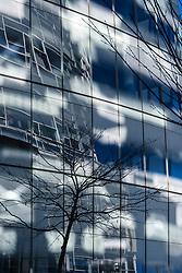 Frank O. Gehry • IAC Headquarters, New York