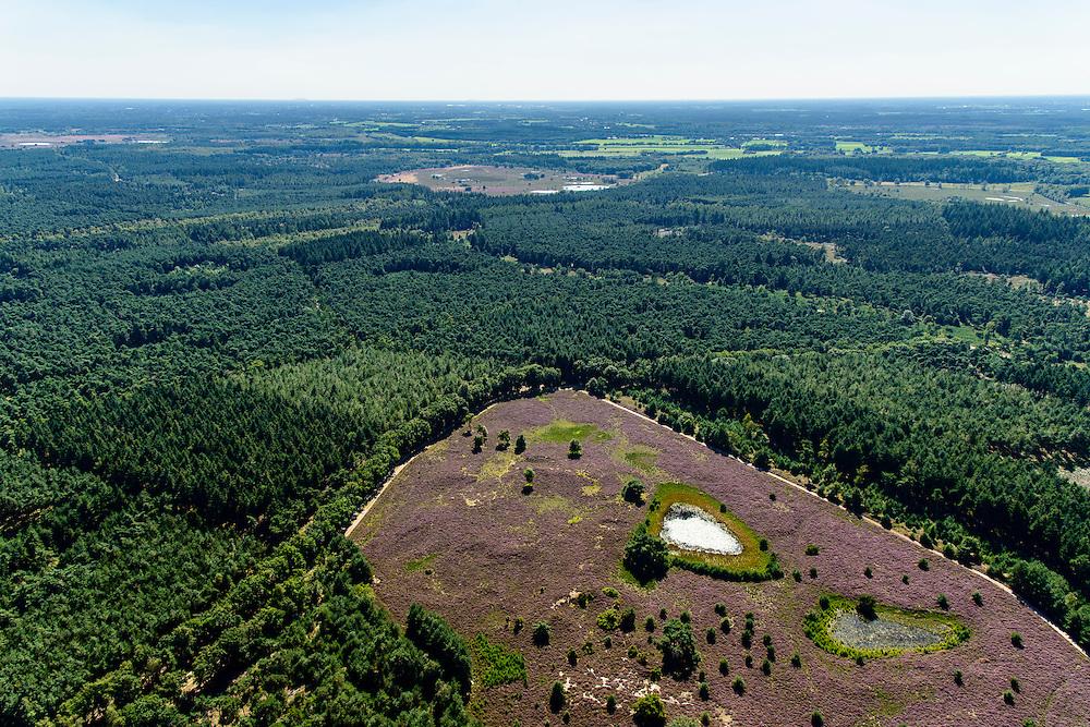 Nederland, Noord-Brabant, Valkenswaard, 23-08-2016; vennen in 't Leenderbos, tussen Valkenswaard en Leende<br /> Ponds in the woods, east of Valkenswaard.<br /> <br /> aerial photo (additional fee required); <br /> luchtfoto (toeslag op standard tarieven);<br /> copyright foto/photo Siebe Swart