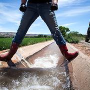 Claudia Hauser checks a dam, May 11, 2016, while irrigating alfalfa on their farm, 652 Montezuma Castle Hwy, Camp Verde, Arizona.