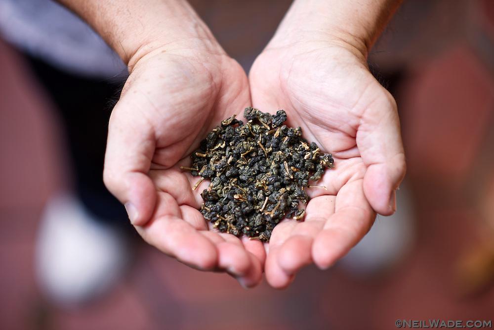 Freshly roasted tea in the hands of Lu Li-Hsien.