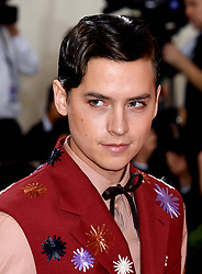 Cole Sprouse attending the Metropolitan Museum of Art Costume Institute Benefit Gala 2019 in New York, USA.