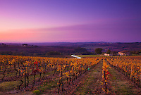 The autumn sun rises over the French region of Gascony in November 2011