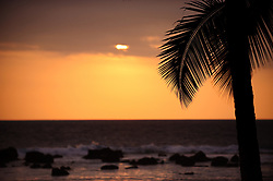 The setting sun sets behind a palm tree at sunset as seen from the Keauhou Beach Resort next to Kahaluu Beach Park in Keauhou on the Big Island of Hawaii. In the background are the remains of an ancient breakwater known as Paokamenehune or menehune breakwater that was built by ancient Hawaiians.