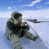 BAFFIN ISLAND, Nunavut, Canada. Inuit hunter Laimake Palluq hides behind portable blind while aiming at ringed seal, Baffin Bay.