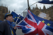 Anti Brexit and pro Europe demonstrators protest in Westminster on Budget Day on 22nd November 2017 in London, England, United Kingdom. As the Tories deliver their Autumn Budget, protesters make their views heard outside Parliament.