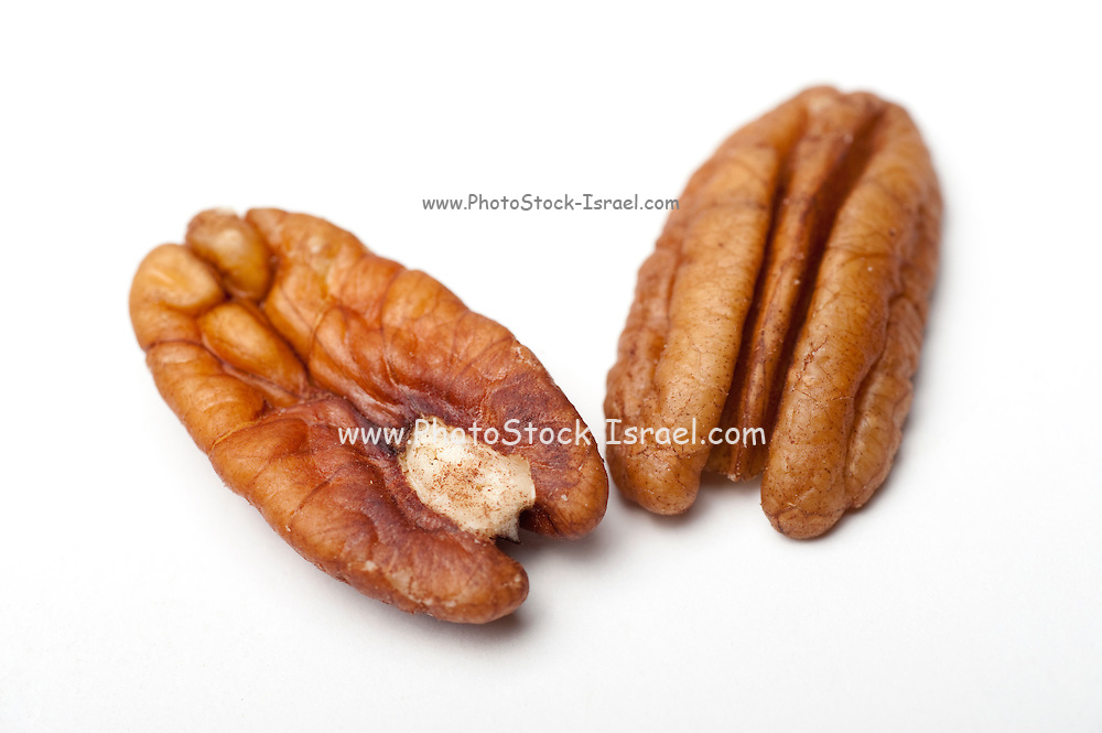 shelled Pecan Nuts (Carya illinoensis) On white Background