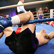 """Luis Rodriguez lies on the mat after a low blow during a """"Boxeo Telemundo"""" boxing match at the Kissimmee Civic Center on Friday, July 18, 2014 in Kissimmee, Florida. Juan Castillo won the bout.  (AP Photo/Alex Menendez)"""