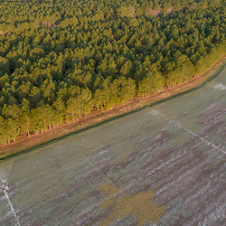 Drone view of fields and forests in Church Creek, Maryland. Spring.