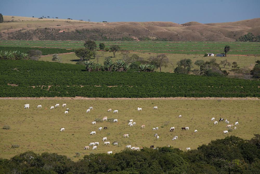 Araxa_MG, Brazil.<br /> <br /> Criacao de gado e agricultura em Araxa.<br /> <br /> The cattle ranching and agriculture in Araxa.<br /> <br /> Foto: LEO DRUMOND / NITRO