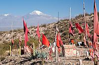 BANDERAS ROJAS EN UN PUESTO DE ADORACION A LA DIFUNTA CORREA EN EL VALLE DE UCO, VOLCAN TUPUNGATO (6550 msnm) AL FONDO, TUPUNGATO, PROVINCIA DE MENDOZA, ARGENTINA