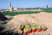 Chine, Province du Sinkiang (Xinjiang), Turfan, Minaret Emin et mosquee Sugong // China, Sinkiang Province (Xinjiang), Turfan, Emin Minar and Sugong mosque