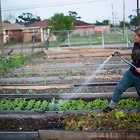 Urban Food Growing | The School At Blair Grocery | Lower Ninth Ward | New Orleans | Local Food Economy | Drew Bird Photography | San Francisco Freelance Photographer