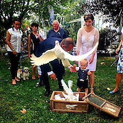 Wedding of my friends. Congratulations to Veronika&Tomas !!! #czechrepublic #wedding #marriage #svatba #bozkov #prag #praha #prague #outdoor #pigeon  #society #celebration #ritual