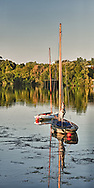 Sailboats moored on the Seine River at Chatou, France are radiant in the afternoon sun. They are next to the famous Maison Fournaise where Monet and Renoir lodged and painted. The Sequana Boat Club is next door to Maison Fournaise.  Aspect Ratio 1w x 2h.