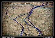 Trails After The Rain.Maasai Mara, Kenya.September 2012