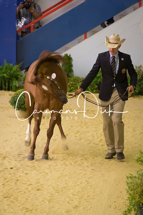 Josh Collins, (GBR), Spook A Little - Horse Inspection Reining  - Alltech FEI World Equestrian Games™ 2014 - Normandy, France.<br /> © Hippo Foto Team - Dirk Caremans<br /> 25/06/14
