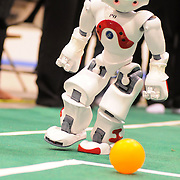 "May 2, 2009 -- BRUNSWICK, Maine.  A Nao humanoid robot looks upfield after kicking the ball as part of the 2009 RoboCup U.S. Open held this weekend at Bowdoin College. The competitors were tasked with creating software for two-legged robots which could independently play soccer with each other. ""Once we put them on the field, they are completely autonomous,""  said Bowdoin Professor of Computer Science and ""Northern Bites"" team advisor, Eric Chown said. ""I'm extremely proud of every one on this team. They are competing against teams with students from multiple institutes and graduate students as well. They are a talented and hard-working group!"" Northern Bites finished fourth out of four teams participating due to injuries to the robots in early play. Photo by Roger S. Duncan."