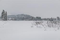 THEMENBILD - Tief Winterliche bedingungen rund um Kitzbuehel, aufgenommen am 10. Jänner 2019, Kitzbuehel, Oesterreich // Deep winter conditions around Kitzbuehel at Kitzbuehel, Austria on 2019/01/10. EXPA Pictures © 2019, PhotoCredit: EXPA/ Stefan Adelsberger