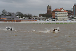 © Licensed to London News Pictures. 30/12/2015. York, UK. Dogs play in the floodwater on York Racecourse. Photo credit : Anna Gowthorpe/LNP