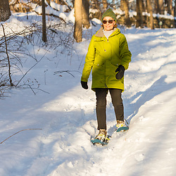 A woman snowshoe in the forest on Indian Hill in West Newbury, Massachusetts.