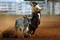 Tiro de laço no 12 Rodeio Internacional do Mercosul, um dos maiores eventos do gênero, que acontece de 22 a 26 de novembro no parque de eventos Sereno Michel.FOTO: Jefferson Bernardes/Preview.com