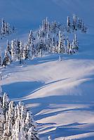 Winter on Kulshan Ridge,  Heather Meadows Recreation Area North Cascades Washington USA