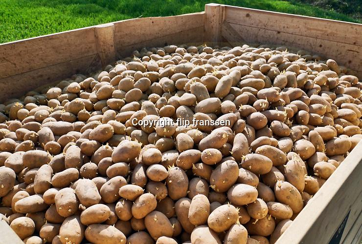 Nederland, Batenburg, 17-4-2020 Een boer, loonwerker, poot aardappels. Het gebeurt automatisch via een ingenieus mechaniek achter de tractor. De grond is droog door het drie weken uitblijven van regen. Foto: Flip Franssen