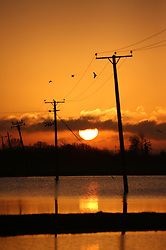© Licensed to London News Pictures. 11/01/2014. Glastonbury, UK Sunrise over flooded farmland around Glastonbury in Somerset today 11th January 2014. Photo credit : Jason Bryant/LNP