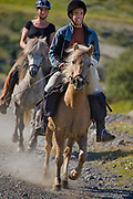 Horse riding in Southern Iceland. <br /> The canyon of Bruarhloo, alongside the Hvita river.