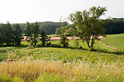 Annelsbachtal bei Höchst im Odenwald, Odenwald, Naturpark Bergstraße-Odenwald, Hessen, Deutschland | Annelsbach valley near Höchst im Odenwald, Odenwald, Hessen, Germany