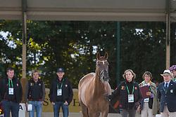 Laurence Vanommeslaghe, (BEL), Avec Plaisir - Horse Inspection Dressage - Alltech FEI World Equestrian Games™ 2014 - Normandy, France.<br /> © Hippo Foto Team - Leanjo de Koster<br /> 25/06/14
