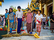 31 OCTOBER 2015 - YANGON, MYANMAR: Volunteers clean the plaza around Shwedagon Pagoda to make merit. Shwedagon Pagoda is officially known as Shwedagon Zedi Daw and is also called the Great Dagon Pagoda or the Golden Pagoda. It is a 99 metres (325 ft) tall pagoda and stupa located in Yangon, Burma. The pagoda lies to the west of on Singuttara Hill, and dominates the skyline of the city. It is the most sacred Buddhist pagoda in Myanmar and contains relics of four past Buddhas: the staff of Kakusandha, the water filter of Koṇāgamana, a piece of the robe of Kassapa and eight strands of hair from Gautama, the historical Buddha. The pagoda was built between the 6th and 10th centuries by the Mon people, who used to dominate the area around what is now Yangon (Rangoon). The pagoda has been renovated numerous times through the centuries. Millions of Burmese and tens of thousands of tourists visit the pagoda every year, which is the most visited site in Yangon.      PHOTO BY JACK KURTZ