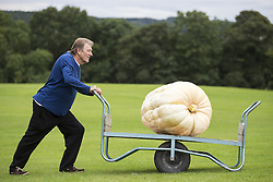 September 16, 2016 - Harrogate, Yorkshire, UK - Harrogate UK. Picture shows Brian Marshall & his prize winning Pumpkin that weighed 139.5 KG at the Giant vegetable competition in Harrogate. The competition see's competitors from across the UK show their biggest Carrot's, Cucumbers, Cabbages, Onion's & Tomatoes competing for the title of heaviest & longest at the Harrogate Autumn Flower Show. (Credit Image: © Andrew Mccaren/London News Pictures via ZUMA Wire)
