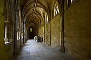 Evora is een stad in het zuidoosten van Portugal, en is de hoofdstad van het gelijknamige district in de regio Alentejo. Het historische centrum van de stad is in 1986 opgenomen op de Werelderfgoedlijst van de UNESCO.De kathedraal van Evora, vroeg-gotisch, gebouwd van 1186 tot 1204 en het klooster van Loios, Convento dos Loios, uit de 14e eeuw.<br /> <br /> Evora is a city in southeastern Portugal, and is the capital of the district of the same name in the Alentejo region. The historic center of the city was added to the UNESCO World Heritage List in 1986. Evora Cathedral, early Gothic, built from 1186 to 1204 and the Monastery of Loios, Convento dos Loios, from the 14th century.