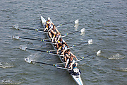 Crew: 53  London RC A<br /> <br /> Head of the River Race (HoRR) 2019<br /> <br /> To purchase this photo, or to see pricing information for Prints and Downloads, click the blue 'Add to Cart' button at the top-right of the page.