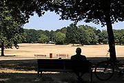 Neederland, Nijmegen, 28-7-2018Door de aanhoudende droogte hebben mens en natuur het moeilijk . Doordat regenval uitblijft worden de waterbuffers kleiner en moet het waterpeil van o.a. het IJsselmeer verhoogd worden om aan de vraag, behoefte te voldoen . Goffertpark met vergeelde grasmat, gras  .Foto: Flip Franssen