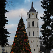Vilnius Cathedral And Christmas Tree, Vilnius, Lithuania